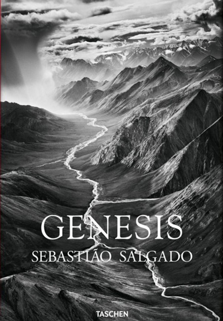 1. cover_fo_salgado_genesis_trade_gb_1307081418_id_618549