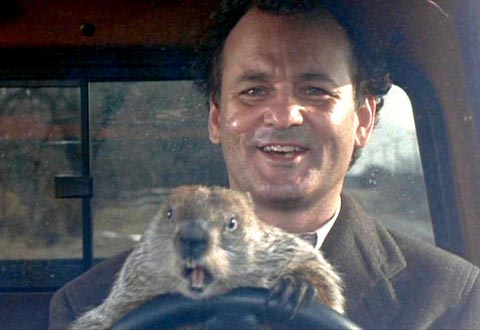 Bill Murray and friend.