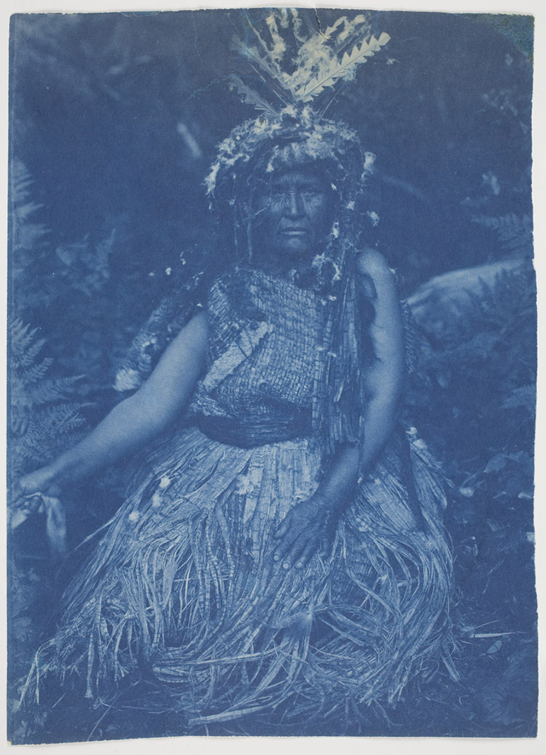 A cyanotype by Curtis.