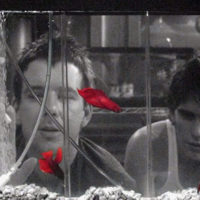 Stephen H. Burum, ASC and Rumble Fish