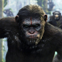 Dawn of the Planet of the Apes / Michael Seresin, BSC