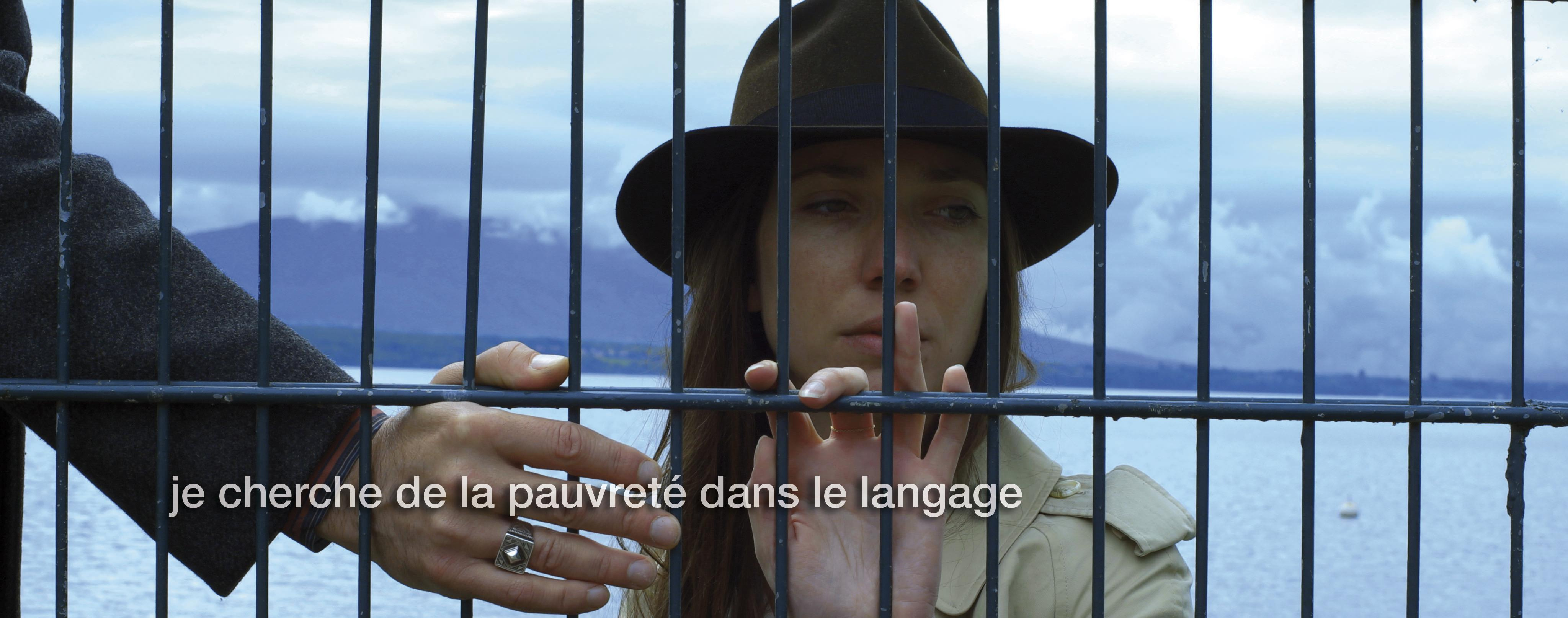 Godard and Goodbye to Language...