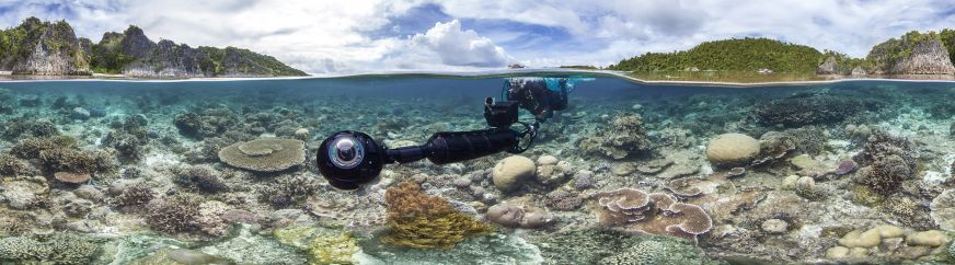 Coral Svii In Coral Triangle Photo By Xl Caitlin Seaview Survey Featured