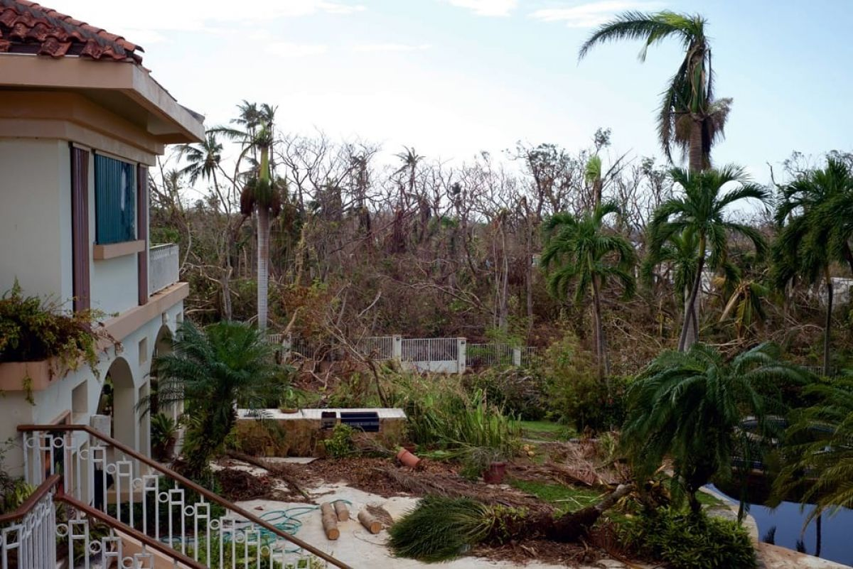 """Following Hurricane Maria, Lindenlaub notes, """"our main location looked devastated. The art department and greens department had a huge job of cleaning up that area and making repairs."""""""