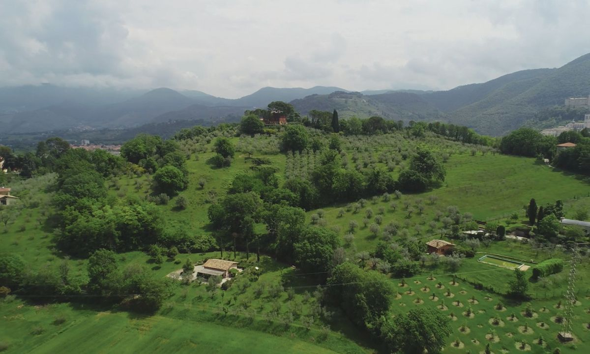 An Italian hillside captured by cinematographer and drone operator Sarah Phillips. (Image courtesy of Sarah Phillips)