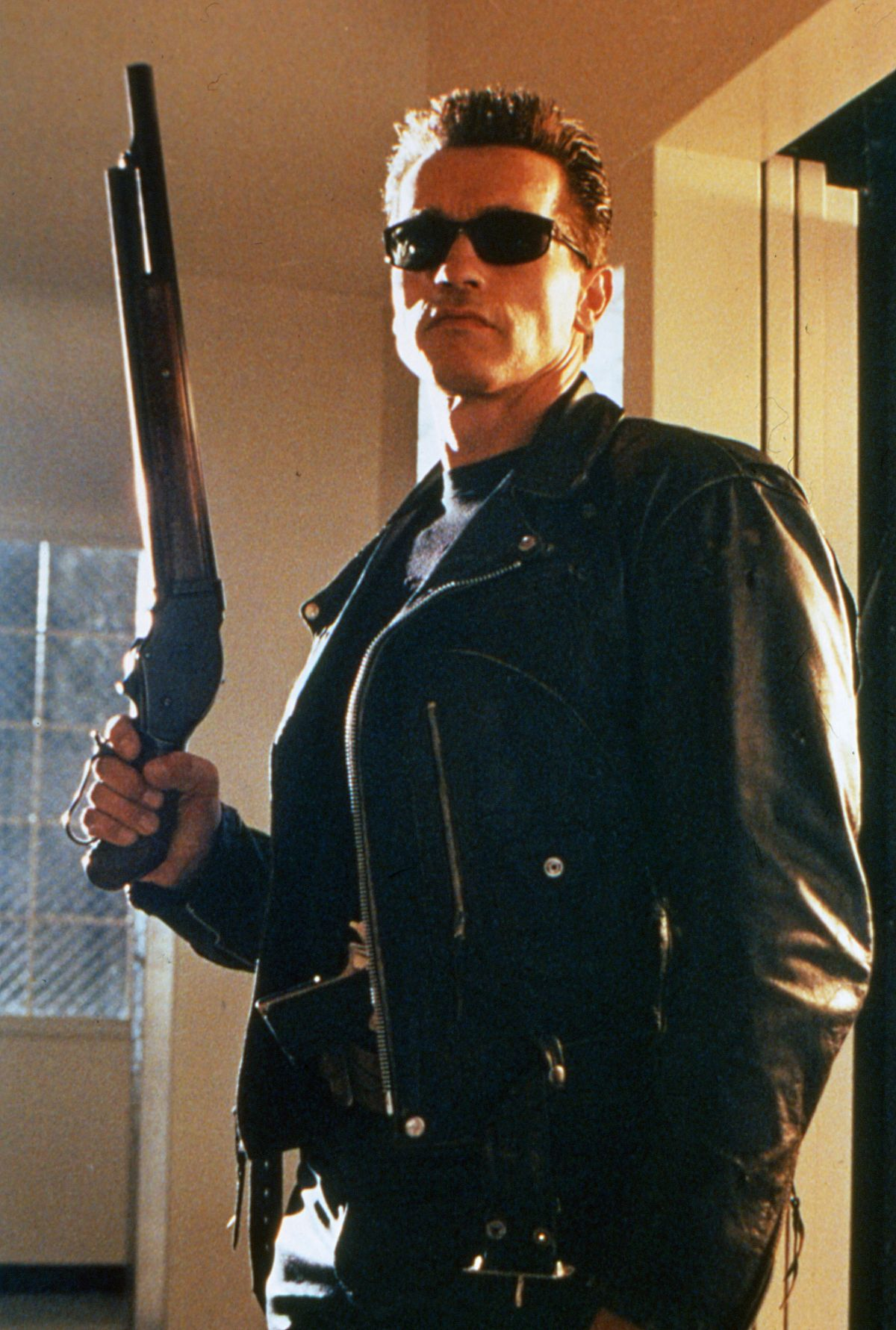 He's back: Arnold Schwarzenegger as the unstoppable Terminator.