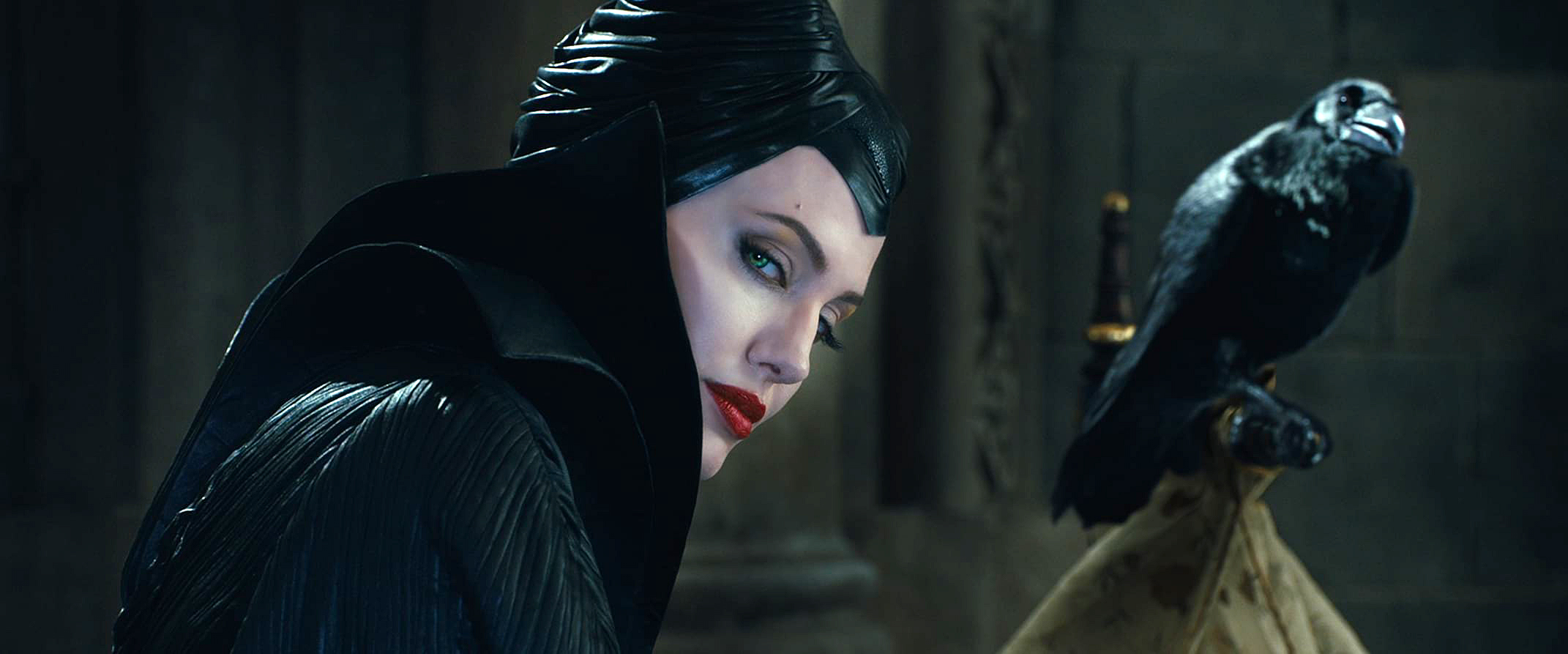 Maleficent A Witch And Her Bird